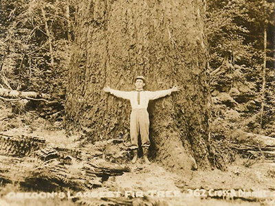 The Roots of History: Oregon's Heritage Trees