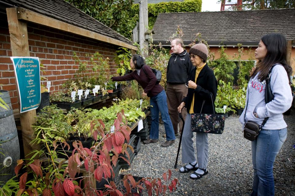 Estate-Grown Plant Sale!