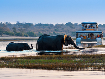 To Travel Or Not To Travel: The possibilities and perils of ecotourism