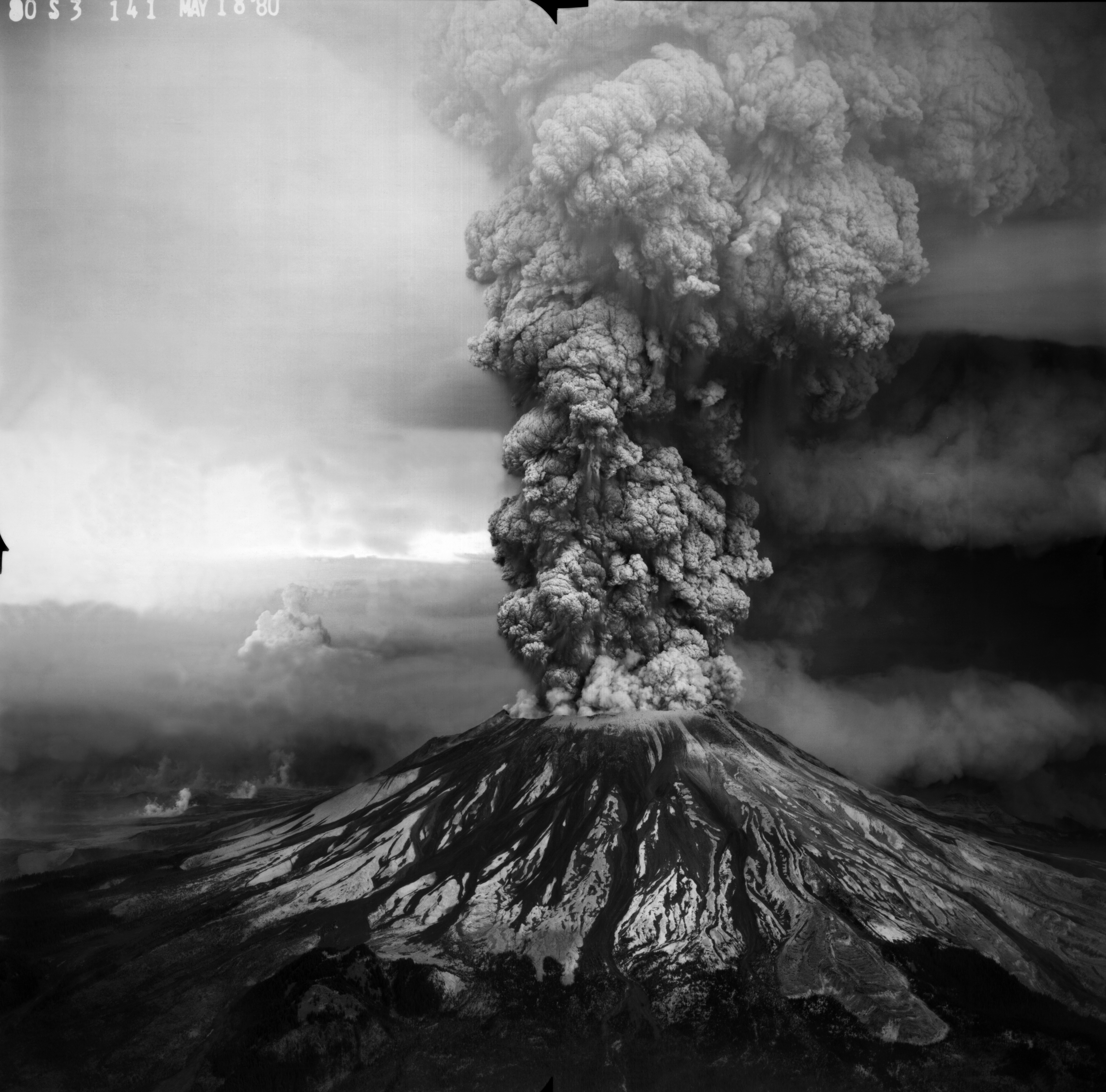 Blast From the Past: Ecological Resilience on Mount St. Helens