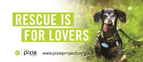 Rescue is for Lovers