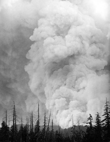 Tillamook Burn: Legacy of Fire