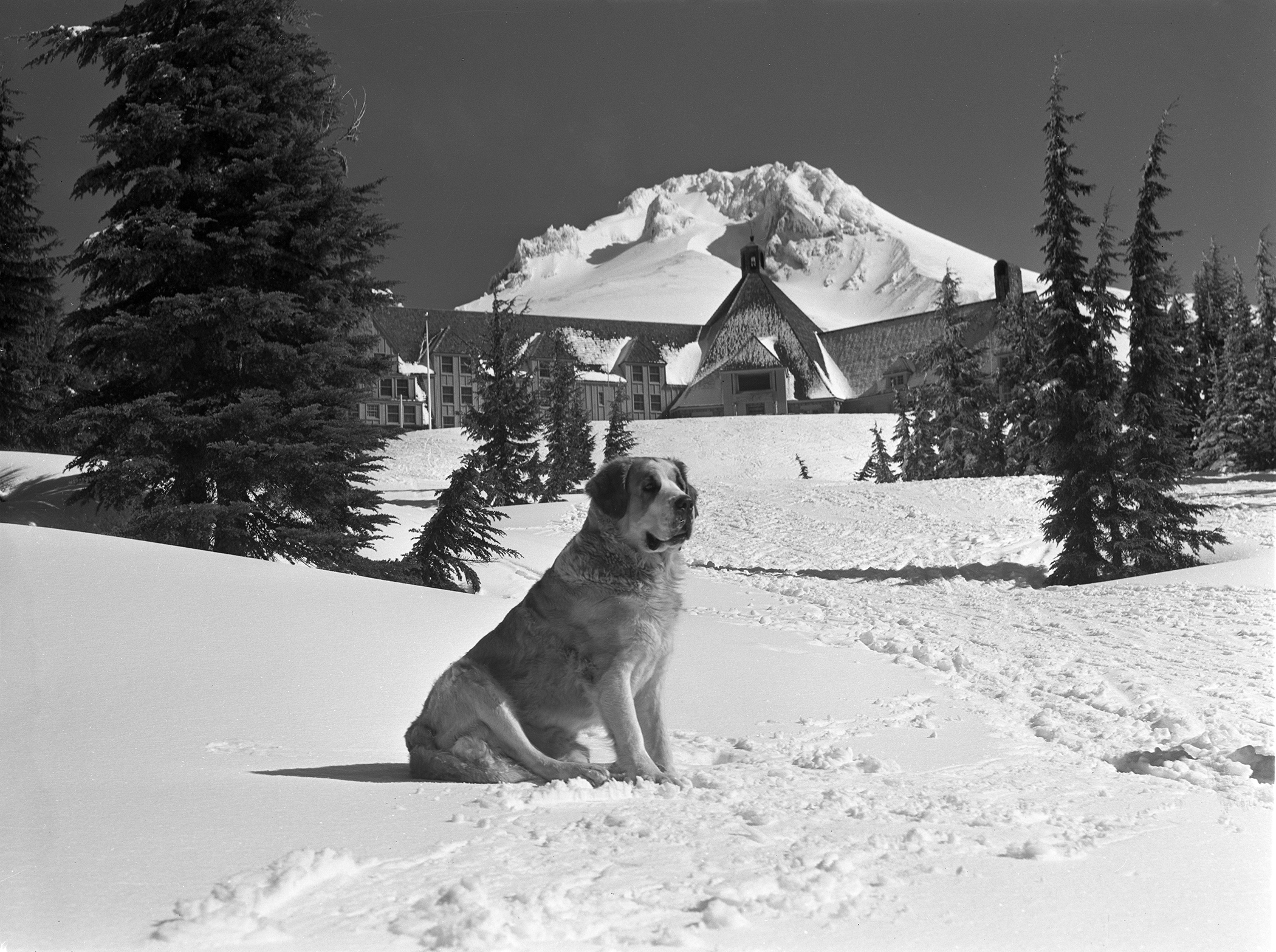Timberline Lodge and Mt. Hood Recreation between 1937 and 1946